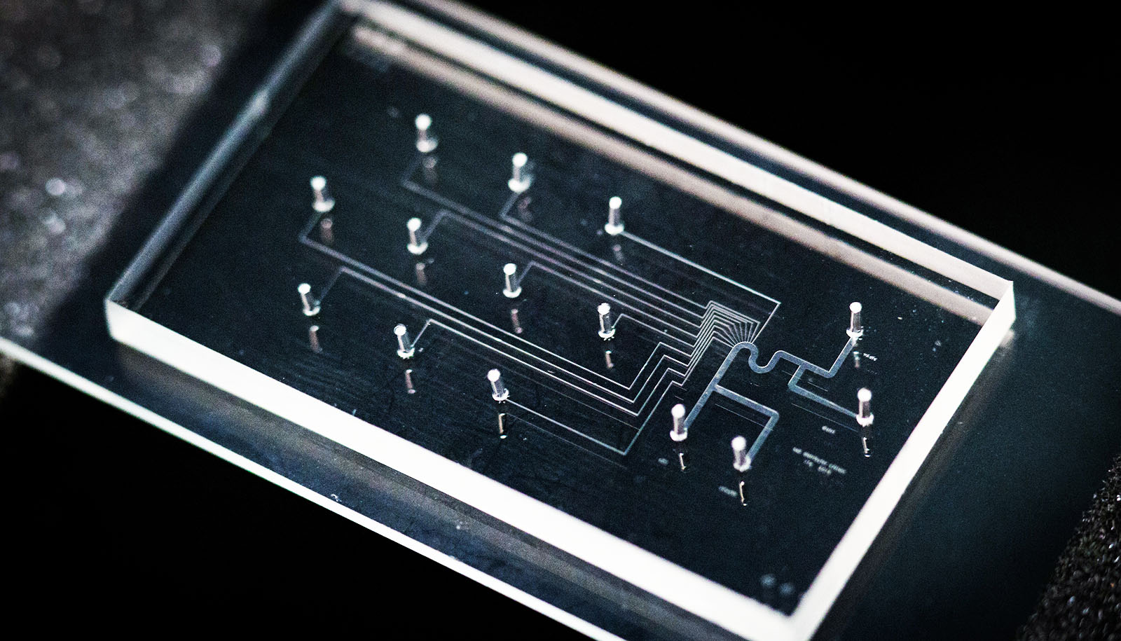 Microfluidic_chip_1600